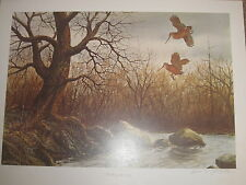 """ TIMBER DOODLE TWO   WOODCOCK  Print by William Tyner -"