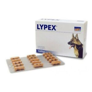 LYPEX BLISTER 60 CÁPSULAS