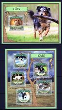 GUINE-BISSAU 2016 CAES DOGS HUNDE CHIEN DOMESTIC ANIMALS PEDIGREE STAMPS MNH**