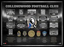 Collingwood Premiership AFL OFFICIAL Print Embossed Medals Frame Pendlebury Swan