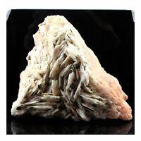 Chalkopyrit, Baryt. 7485.0 Ct. Dreislar, Winterberg, Deutschland