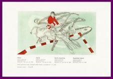 LITOGRAFIA RAFAEL BARTOLOZZI. HÍPICA. Numerada. Diseño original para COOB'92