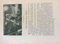 M17b ephemera 1920s short story the circus pony story