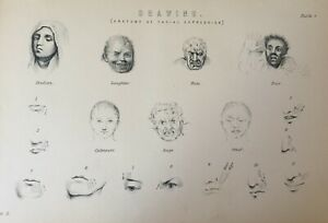 ANTIQUE PRINT C1870'S DRAWING ENGRAVING ANATOMY OF FACIAL EXPRESSION RAGE FEAR