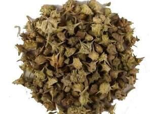 Gokhru Kanta , 100 Grams Of Authentic And Premium Quality Gokhru Kanta