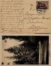 REGNO-30c FILIBERTO dent. 11(228)-Cartolina Savona->Bari 13.12.1928