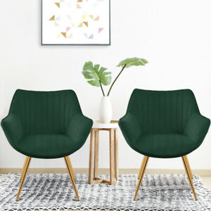 2X Dining Chairs Nordic Oyster Chair with Wide Slanted Arm Accent Seat Kitchen
