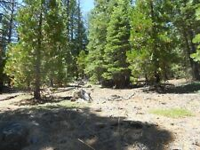 Northern California Mountain Property .9 acre Near Power!