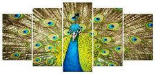Canvas Print Painting Picture Photo Peacock Poster Home Decor Wall Art Framed