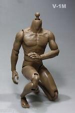 """Macho de 1/6 Marrón Movible muscular fuerte cuerpo Figura Juguete 12"""" hombre desnudo con cuello muñeca"""