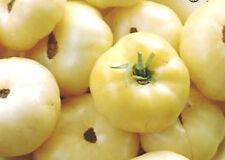 TOMATO 'White Beauty' 25+ seeds UNUSUAL HEIRLOOM non gmo vegetable garden