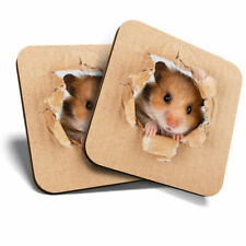 2 x Coasters - Cheeky Hamster Animals Pets Cute Home Gift #8521