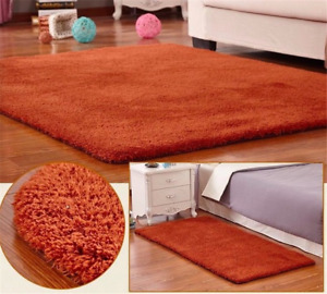 Newest  Nordic Fluffy Carpet Rugs for Bedroom Living Room Rectangle Large Plush