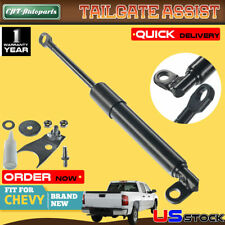 Tailgate Assist Shock Struts for Chevrolet Silverado 1500 2500 3500 HD 1999-2007