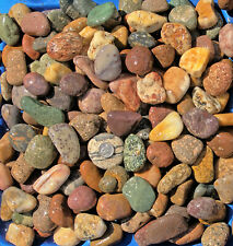 30 lbs Lot #2 Small Colorful River Rocks Water Feature Aquarium Landscape Pond