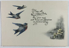 VTG Christmas Greeting Card, Beautiful Blue Birds & Daffodils