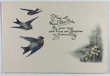 VTG Christmas Greeting Card, Beautiful Blue Birds & Daffodils