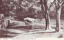 ENFIELD, EDMONTON, nr BARNET, WEIR HALL LANE, SILVER ST, BY G SMITH Posted 1909
