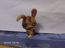 Littlest Pet Shop Lot of Bunnies Brown Bunny White Carrot Hat Bunny 1606 1766