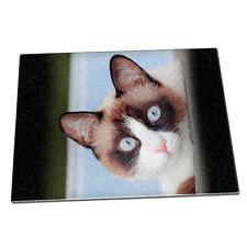 Raquetas de nieve gato animal DE CRISTAL PICAR Board 289