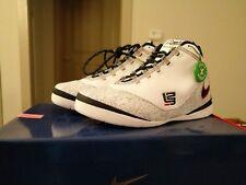 Nike LeBron Zoom Soldier II 2 United We Rise Size 10 Style 334098-141