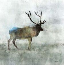 KEN Roko : Solo Stag Imagen TERMINADA 50x50 Mural CIERVO Wild Animales moderno