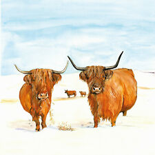 Sue Podbery Highland Cattle in Snow Glass Coaster Made in the UK 3778