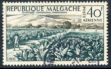 TIMBRE DE MADAGASCAR N°79 OBLITERE CHAMP DE TABAC