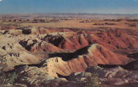 Chrome Postcard A797 The Painted Desert Arizona AZ Posted 1954 Hubert Lowman