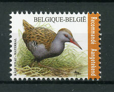 Belgium 2017 MNH Water Rail Recorded Signed For 1v Set Birds Stamps