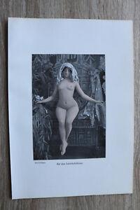 Jugendstil Kunst Blatt 1905 Erotik Frau SCHÖNHEITSTHRONE Akt Nude Erotic Risque