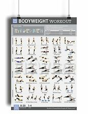 "Bodyweight Exercise Poster Laminated Personal Trainer Gym/Home 19""X27"" Workout"