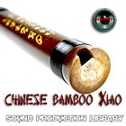 XIAO Chinese Bamboo Flute - Original WAVE/NKI Multi-Layer Samples Library on DVD
