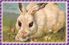 Carte Postale - Fantaisie - Gaufrée -  Lapin de pâques