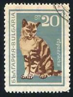 POSTAGE STAMP BULGARIA 20 STOTINKA DOMESTIC CAT POSTMARKED POSTER PRINT BMP11211