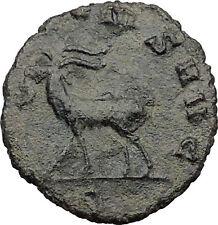 Gallienus son of Valerian I Ancient Roman Coin Goat alludes to Jupiter i31529