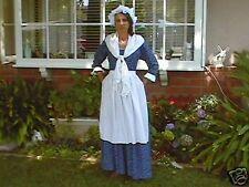 DAR colonial womens gown martha washington dress made 2 measurement color choic