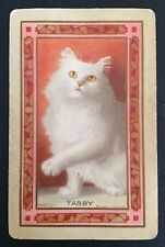 Vintage Swap/Playing Card - NAMED CAT - TABBY