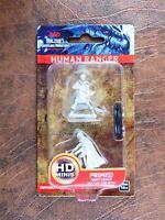 Human Ranger - D&D Miniatures - Wizkids Nolzurs Marvelous Miniatures #1B7
