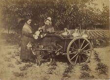 Attelage de chien Bruxelles Belgique Photo Vintage Albumine ca 1880