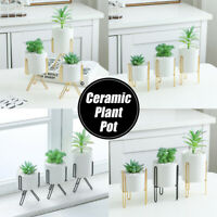 Succulent Pot Rack Metal Ceramic Planter + Iron Stand Garden Flower Plant Vase