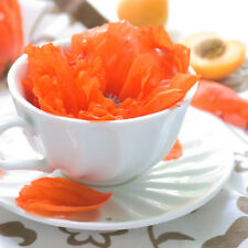 Wild Peach Poppies Perfume Fragrance Roll on Oil Bottle BBW Type Musk Scent