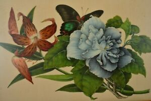 2 Early 20C Chinese Watercolor Painting on Rice Pith Paper Botanical Crab Flower