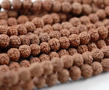 6mm Natural Rudraksha Bodhi Seed Mala Meditation 108 Beads Red Brown Round 23""
