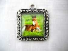 FOAL RESTING IN GRASS PONY HORSE GLASS CABOCHON SQUARE ALLOY PENDANT NECKLACE