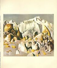 "1976 Vintage CALIFORNIA /""MAMMOTH ARBOR VITAE CALAVERAS COUNTY/"" Lithograph 30"