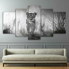 Lioness Lion Animal Framed 5 Piece Canvas Wall Art Image Picture Wallpaper Mural
