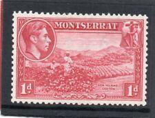 Montserrat GV1 1938-48 1d. carmine P13 sg 102 LH.Mint