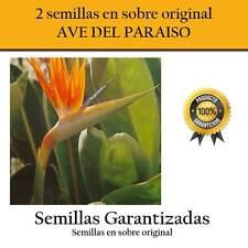 2 semillas de Ave del Paraiso sobre original
