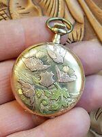 VINTAGE~Elgin 1911 Grade 255 0s 15 jewels 14k Tri Color Gold Hunter Pocket Watch